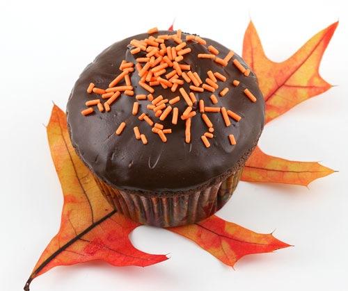 chococupcakes1