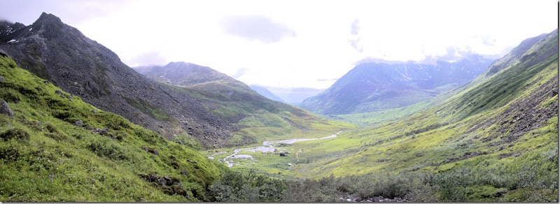 Reed Valley Panorama 1