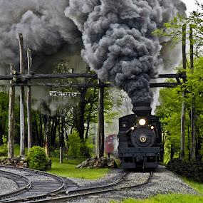 Entering Whitaker by Jeff Stallard - Transportation Trains ( steam engine, cass, west virginia, railroad, whitaker, logging, scenic )