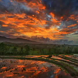 Sunset Sky and The Terraces by Kadek Jaya - Landscapes Sunsets & Sunrises ( cloud formations, terrace, sky, ricefield, dusk )