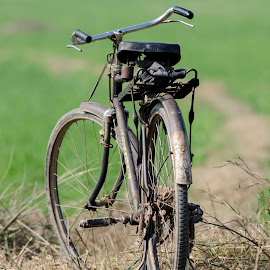 Bicycle by Deepak Goswami - Transportation Bicycles