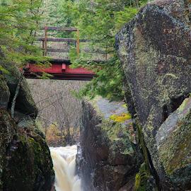 River Runs Through It - Gorge by Roberta Janik - Landscapes Waterscapes ( rock_face, sunridge, rock_walls, gorge, rushing_water, ontario, bridge, river, foot_bridge )