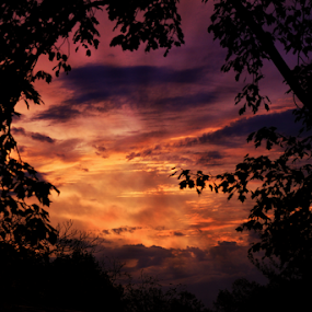 WV sunset in Oct by Dawn Vance - Landscapes Sunsets & Sunrises ( sky, colors, sunset, trees, leaves )