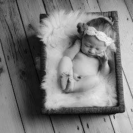 3 day old Gabiella Marie of England by Brigitte McCord - Babies & Children Babies