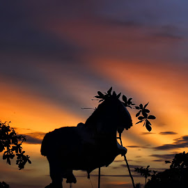 by Hendra Edi Saputra - Landscapes Sunsets & Sunrises