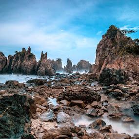 shark teeths by Rendy Yuninta - Landscapes Beaches ( teluk kiluan, indonesia, landscape, lampung, photography,  )