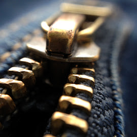 Zip by Yeva Zak - Artistic Objects Clothing & Accessories ( zip. clothing. accessories   zipper )