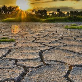 Dry sunrise by Jim Harmer - Landscapes Deserts