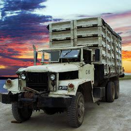 Chicken Truck by Joerg Schlagheck - Transportation Automobiles ( chicken, adventure, twowheelsandacamera., sky, truck, ower, lake, road,  )
