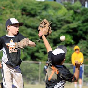YOUTH BASEBALL by Bill Waterman - Sports & Fitness Baseball ( playing, baseball, kids, youth, landscape,  )