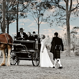 Carriage Ride by Alan Evans - Wedding Other ( adventure, wedding photography, wedding day, wedding, horse and carriage, horse, aj photography, horse carriage, bride and groom, bride, groom,  )