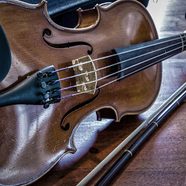 Violin & Bow by Carol Plummer - Artistic Objects Musical Instruments