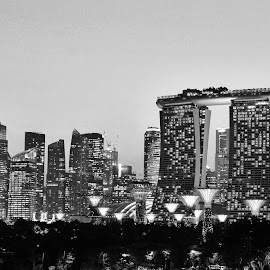 City Buildings by Koh Chip Whye - Buildings & Architecture Office Buildings & Hotels (  )