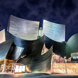 Walt Disney Concert Hall by My Le - Buildings & Architecture Public & Historical ( architecture city night landscape building )
