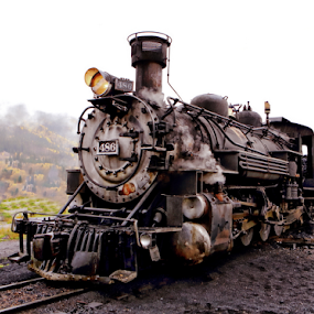486 by Dennis Ducilla - Transportation Trains ( railway, railroad, colorado, passenger train, silverton, rain, trains, steam )