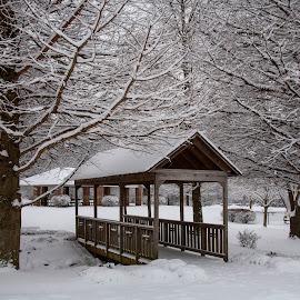 Winter Wonderland by Lisa Hendrix - Landscapes Weather ( winter, park, snow, trees, bridge )