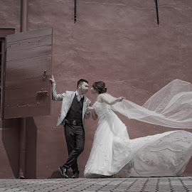 Romance Kiss by Tim Chong - Wedding Bride & Groom ( weddings, wedding, marriage )