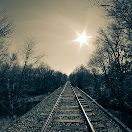 Fish Eye Railroad Track by KRISTOPHER HILL - Transportation Railway Tracks ( fisheye, black and white, railroad, track, rr, bridge, sun )