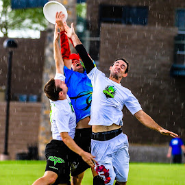 The Catch by Quan Nguyen - Sports & Fitness Other Sports ( ultimate frisbee )