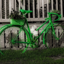 going green by Chrissy Woodhouse - Transportation Bicycles ( green, planter, flowers, bicycle )