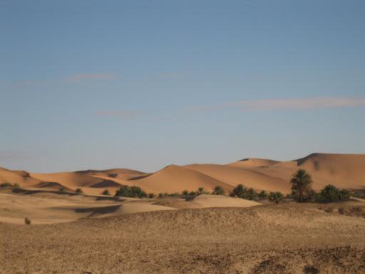صور بني عباس بولاية بشار جنوب الجزائر Photo%20desert%20alg%C3%A9rie%20%20059