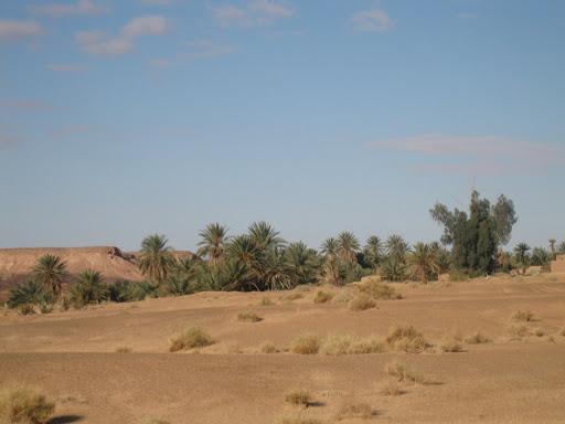 صور بني عباس بولاية بشار جنوب الجزائر ALGERIE%2062