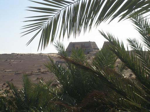 صور بني عباس بولاية بشار جنوب الجزائر Photo%20desert%20tunisie%20091