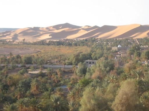 صور بني عباس بولاية بشار جنوب الجزائر Photo%20desert%20tunisie%20104