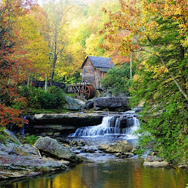 Glade Grist Mill @ Babcock State Park by Melanie Goins - Landscapes Prairies, Meadows & Fields ( mill, west virginia, fall, reflections, rocks )