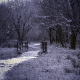 Ice  cold  invitation by Gordon Simpson - Landscapes Prairies, Meadows & Fields