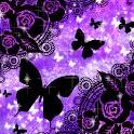 KiraHime JP Butterfly Dream