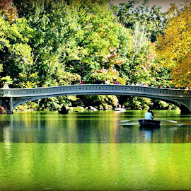 The Bow Bridge  by Andrew Michaelsen - Travel Locations Landmarks ( new york city the bow bridge iconic )