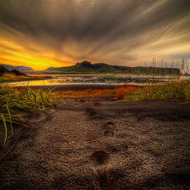 Morning by John Aavitsland - Landscapes Sunsets & Sunrises