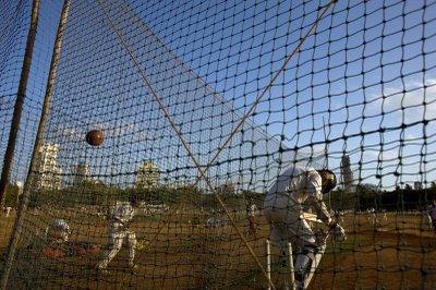 Cricket.07.JPG