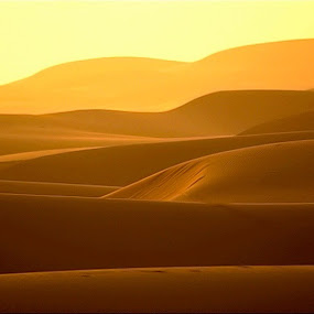 by Darrin James - Landscapes Deserts
