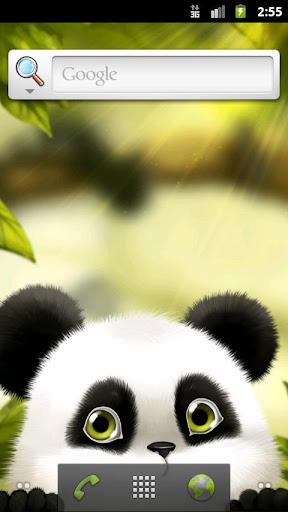 熊貓鰱魚動態壁紙