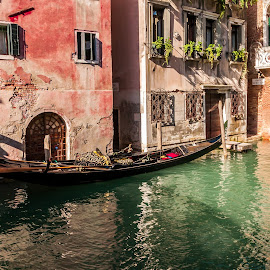 Venice Street by Maurizio Tuccio - City,  Street & Park  Street Scenes ( gondola, venice, lagoo, canal, italy )