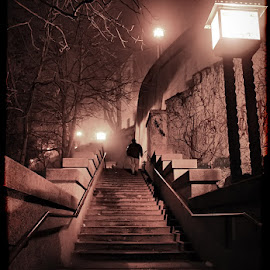 Night vision by Dalia Kager - City,  Street & Park  Street Scenes