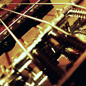 Four Strings Precission Bass Guitar by Nat Bolfan-Stosic - Artistic Objects Musical Instruments ( bass, guitar, strings, four, precission, object, musical, instrument )