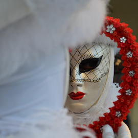 The Carnival of Venice MMXIV by Rotariu Dragos - News & Events World Events