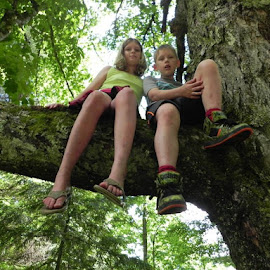 Old Maple by Barbara Reynolds - Babies & Children Children Candids