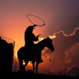Riding High by Gary Hanson - Sports & Fitness Rodeo/Bull Riding ( twirling, riding, sunset, rodeo, lasso, roper, high, team roper )