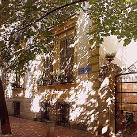 autumn by Verica Pavlovic - City,  Street & Park  Street Scenes