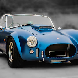 Elegant Cobra by Michael Lucchese - Transportation Automobiles ( automobiles, selective color, blue, black and white, cars, nikon, classic, photography, cobra, land, device, transportation )