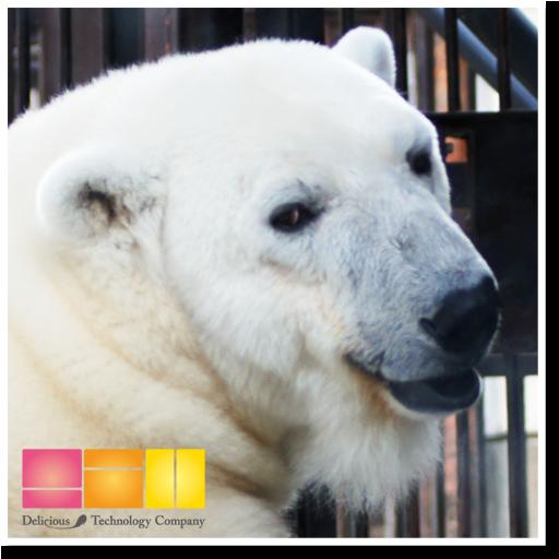 i 動物園 とべ動物園 旅遊 App LOGO-APP試玩