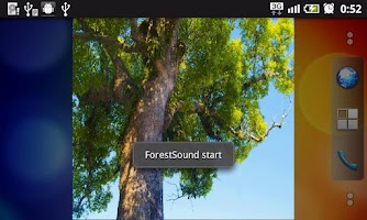 Screenshot of ForestSound