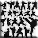 Martial Arts & Fighting TV Pro icon