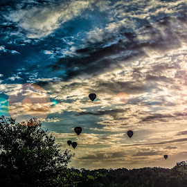 A Silent Morning for Flight by Chris Thomas - Landscapes Sunsets & Sunrises ( dreamy, hot air baloons, hot, air, balloons, landscape )