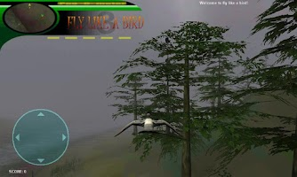 Screenshot of Fly like a bird 3