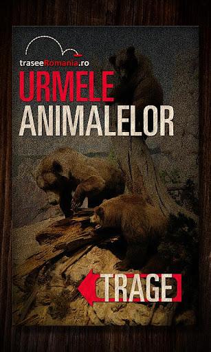 URMELE ANIMALELOR